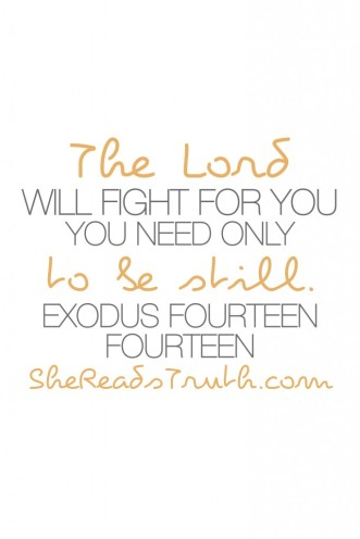 Exodus1414-683x1024